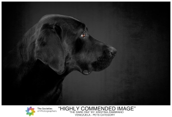 The Societies - Highly Commended Image